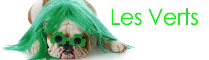Snoods pour chien vert