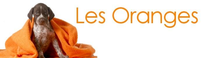 Snoods pour chien orange
