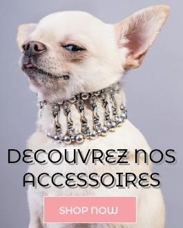 Accessoires pour chien et pour snood